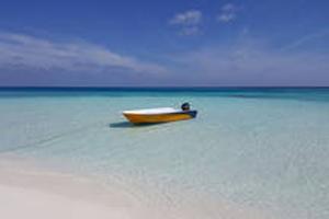 Image result for barca veloce alimatha